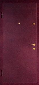 Дверь с порошковым напылением модель 6
