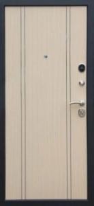Дверь с МДФ модель 67