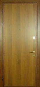 Дверь с ламинатом модель 2