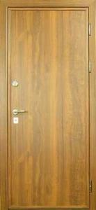 Дверь с ламинатом модель 11