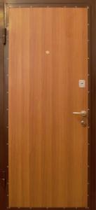 Дверь с ламинатом модель 25