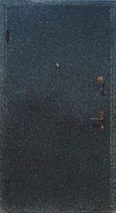 Дверь с порошковым напылением модель 19